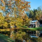 Promenade dans la nature : un moyen efficace pour se relaxer
