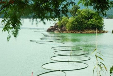 Découvrir la beauté de Da Mi à Binh Thuan