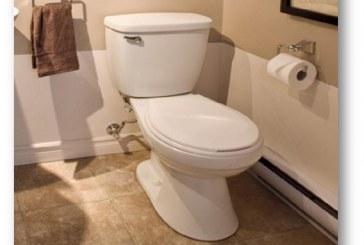 Comment choisir la bonne toilette, une ou deux pièces ?
