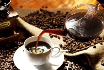 Culture du café du Vietnamien