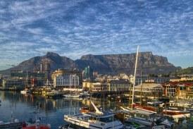Séjour en Afrique du Sud : entre safari, plages et découvertes culturelles