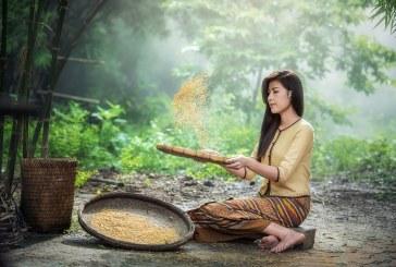 Une tournée remplie de promesses de détente et de plaisirs en Thaïlande