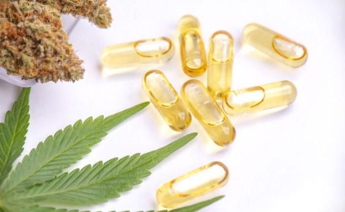 Quelles sont les propriétés thérapeutiques du Cannabidiol CBD ?