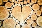 Meilleures chaînes de tronçonneuse pour couper du bois de chauffage et du bois dur