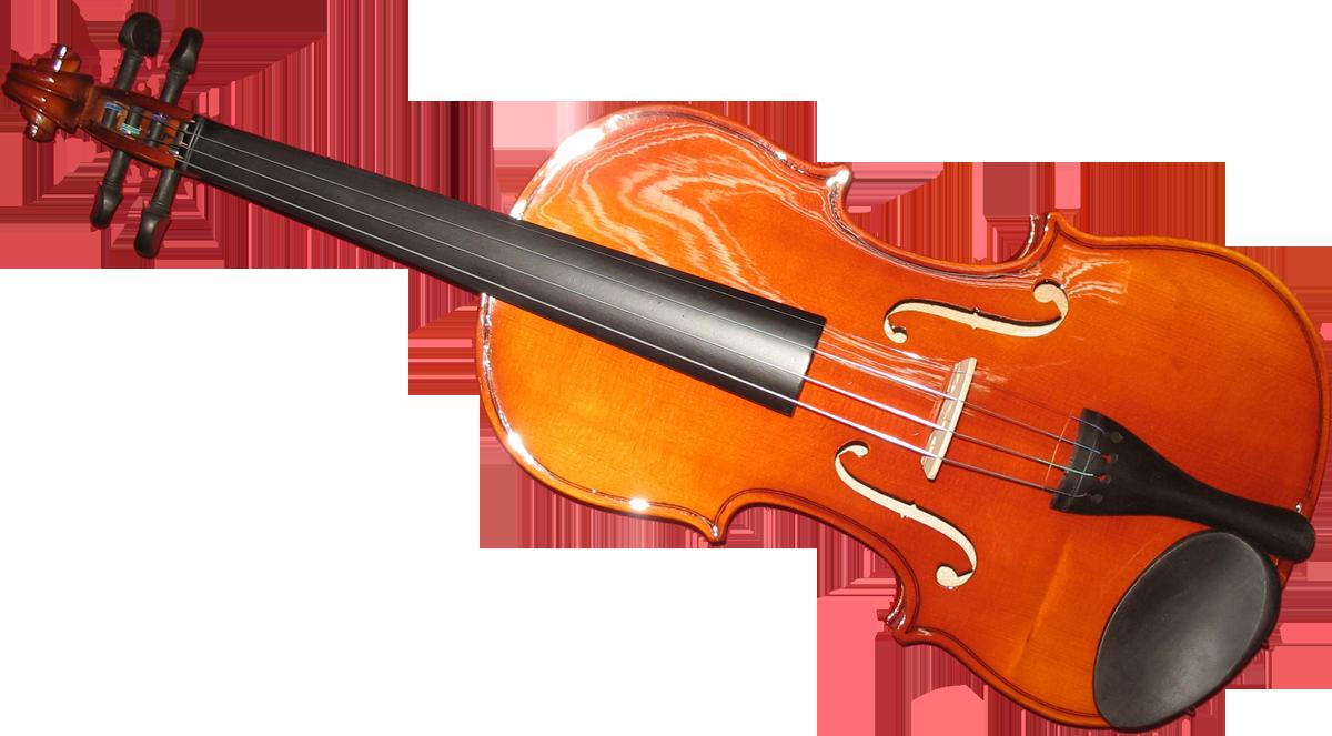 Decouvrir L Histoire Du Violon Pour Mieux En Jouer