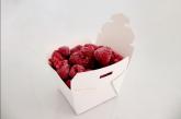 Opter pour des emballages alimentaires en carton pour préserver l'écosystème