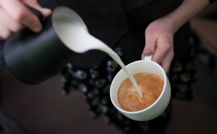 Torréfacteur café bio