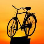 Expert Biker Explique Comment Trouver De Bons Vélos De Montagne Bon Marché